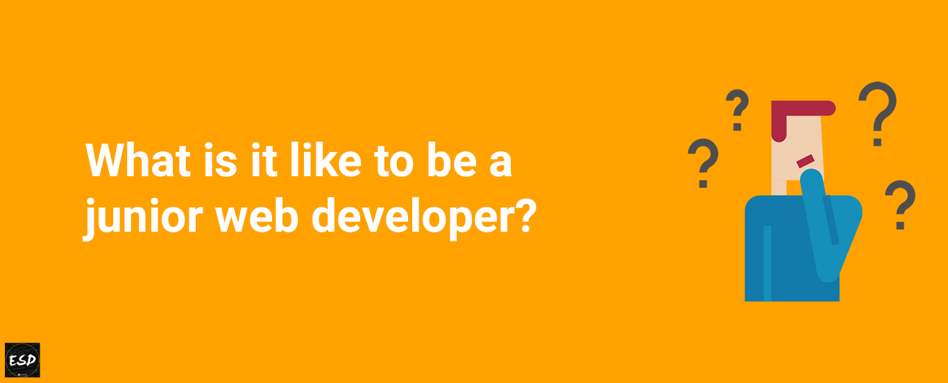 what is it like to be a junior web developer
